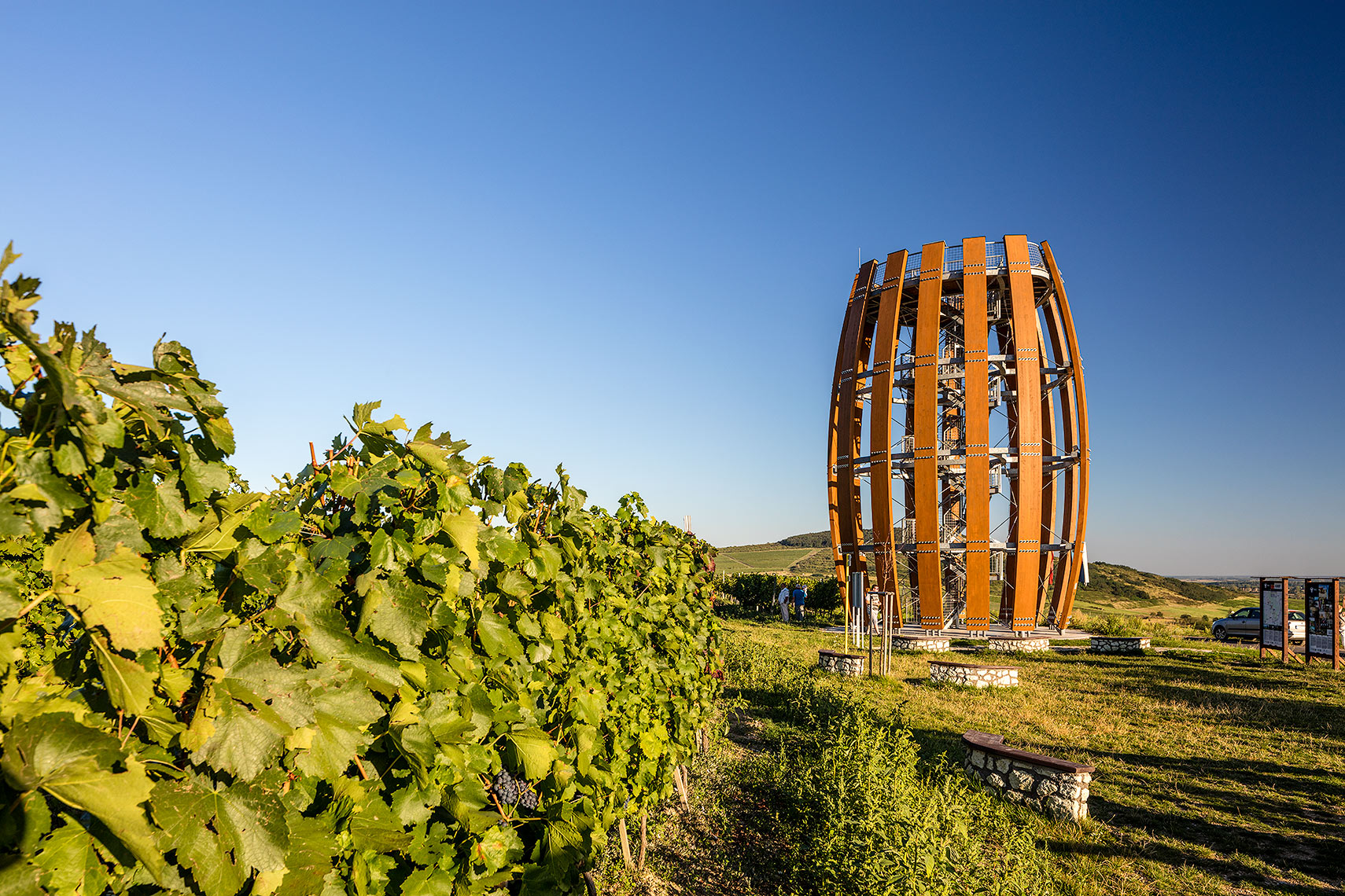 Tokaj tower among the wines, Peter A. Sellar Architectural Photographer
